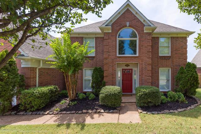 481 Canter Gait Lane, Collierville, TN 38017 (MLS #324740) :: Signature Realty