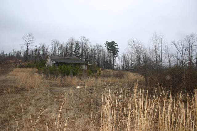 2189 Chapman Road, Ashland, MS 38603 (MLS #324965) :: The Live Love Desoto Group
