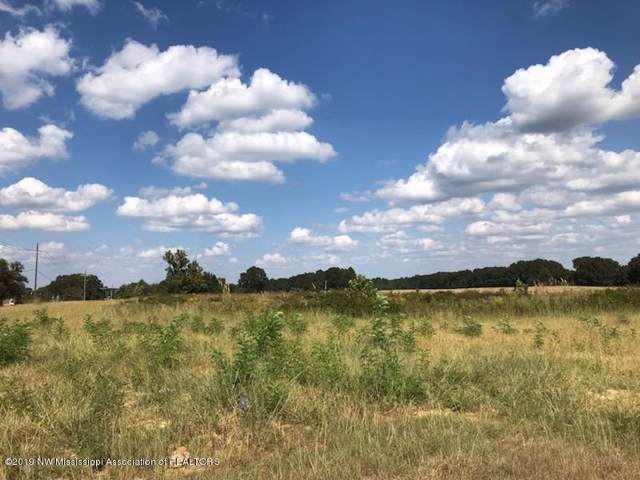 005 Highway 51 S, Senatobia, MS 38668 (MLS #325425) :: Signature Realty