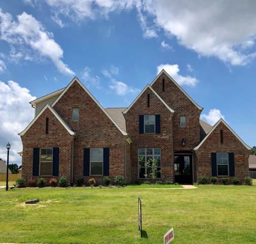 6359 S Brair Lane, Olive Branch, MS 38654 (MLS #325580) :: Signature Realty