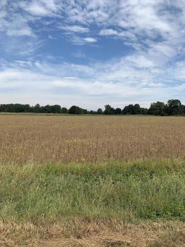 00 Curtis Road, Batesville, MS 38606 (MLS #325624) :: Signature Realty