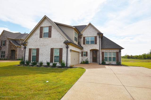 6591 West Broadwing Circle, Olive Branch, MS 38654 (MLS #325706) :: Signature Realty