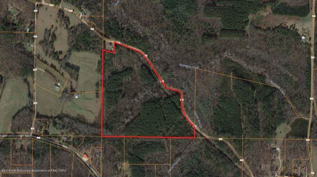 50 Co Rd 276, Iuka, MS 38852 (MLS #325714) :: Signature Realty
