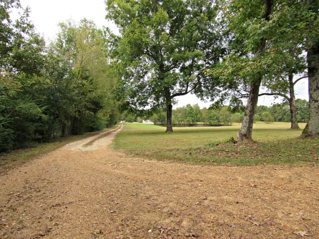 1431 Gaines Road, Hernando, MS 38632 (MLS #325739) :: Signature Realty