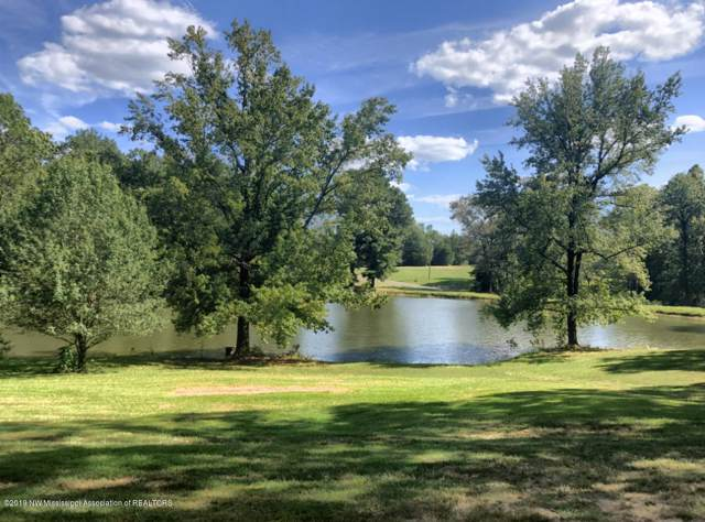 7290 Austin Road, Lake Cormorant, MS 38641 (MLS #325743) :: Gowen Property Group | Keller Williams Realty