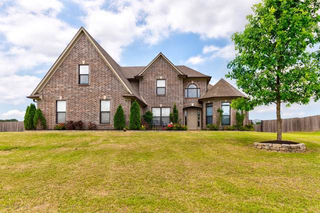3841 Mitchell's Corner Road, Olive Branch, MS 38654 (MLS #326246) :: Gowen Property Group | Keller Williams Realty