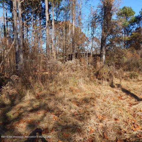 647 Haire Road, Batesville, MS 38606 (MLS #326445) :: Signature Realty