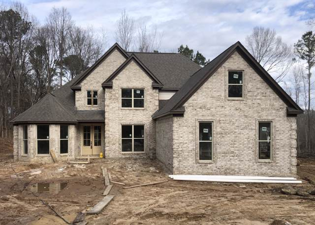 10794 Woolsey Road, Olive Branch, MS 38654 (MLS #327107) :: Signature Realty