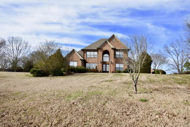 1133 Bright Heights Drive, Hernando, MS 38632 (MLS #327797) :: The Live Love Desoto Group