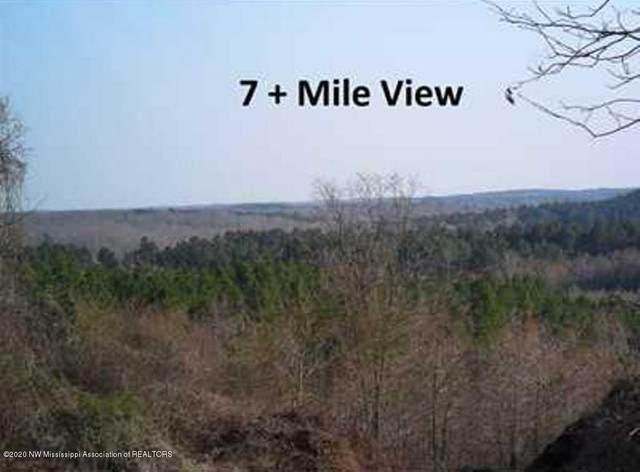 3800 Lamar Road, Ashland, MS 38603 (MLS #327858) :: Gowen Property Group | Keller Williams Realty