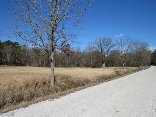 58 Co Rd 332, Taylor, MS 38673 (MLS #328010) :: Signature Realty