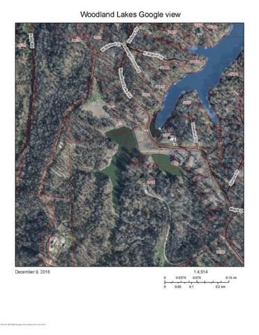 239-245 Woodland Lake Drive, Hernando, MS 38632 (MLS #328098) :: Signature Realty