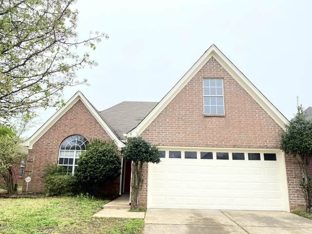 5941 Alexandria Lane, Southaven, MS 38671 (MLS #328534) :: The Live Love Desoto Group