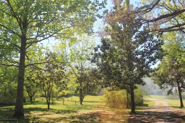 7820 Looxahoma-Tyro Road, Senatobia, MS 38668 (MLS #328871) :: The Live Love Desoto Group