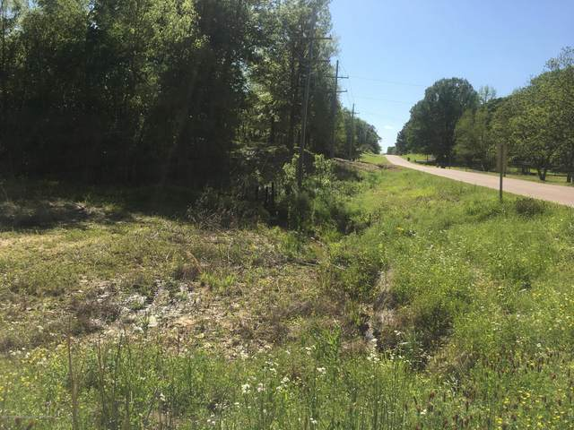 0 Desoto Road, Horn Lake, MS 38637 (MLS #328980) :: Gowen Property Group | Keller Williams Realty