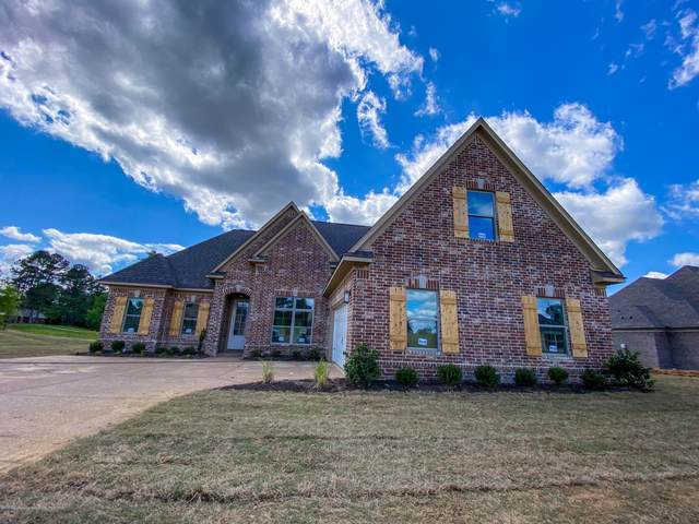 3191 Ross Meadows Lane, Olive Branch, MS 38654 (MLS #329330) :: The Live Love Desoto Group