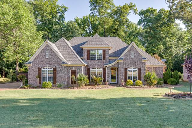 3828 Cobblewood Drive, Southaven, MS 38672 (MLS #329430) :: The Live Love Desoto Group