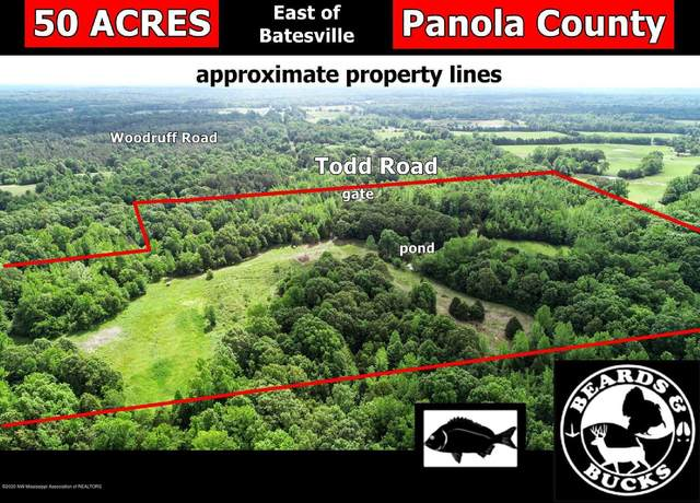 00 Todd Road, Batesville, MS 38606 (MLS #329444) :: Signature Realty