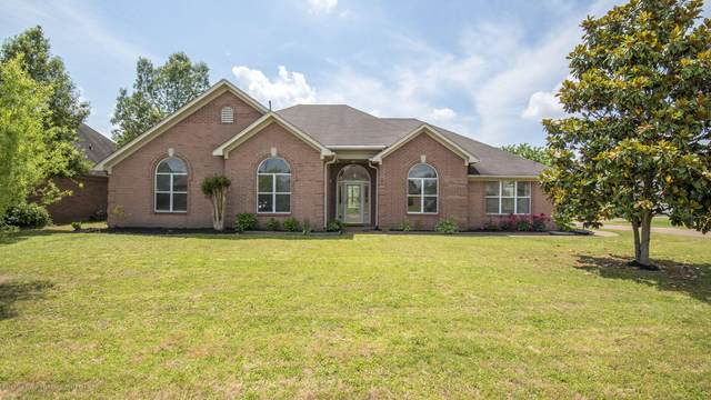 6431 Braybourne Main, Olive Branch, MS 38654 (MLS #329480) :: Signature Realty