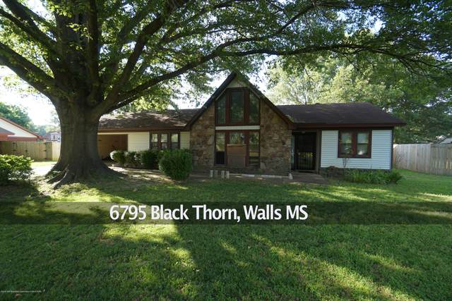 6795 Blackthorn Drive, Walls, MS 38680 (MLS #329507) :: Signature Realty