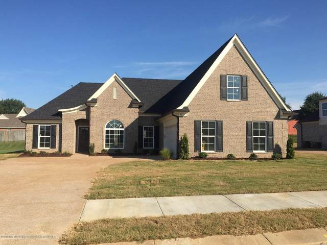4570 Spike Lane, Horn Lake, MS 38637 (MLS #329945) :: The Live Love Desoto Group