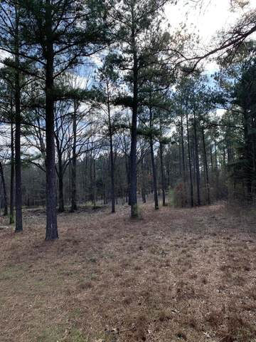 14417 Cathy Road, Byhalia, MS 38611 (MLS #329957) :: The Home Gurus, Keller Williams Realty