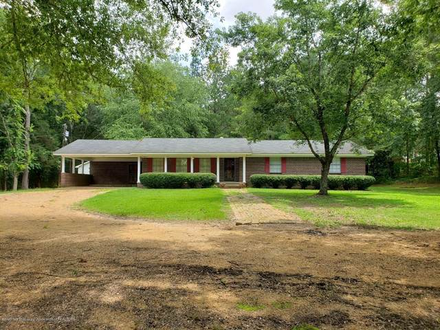 64 Pear Street, Pope, MS 38658 (MLS #330197) :: Signature Realty