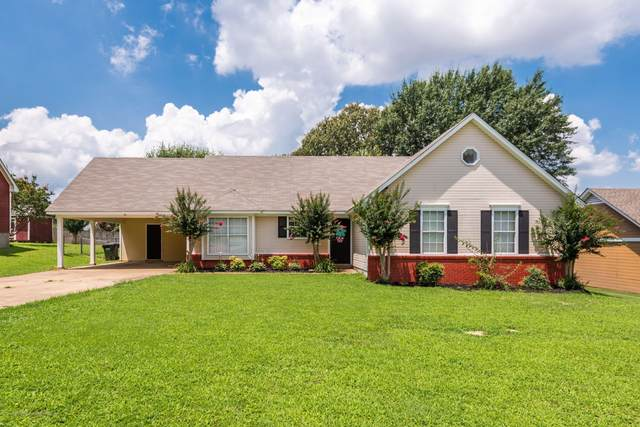 7777 Southfield Road, Southaven, MS 38671 (MLS #330267) :: Signature Realty