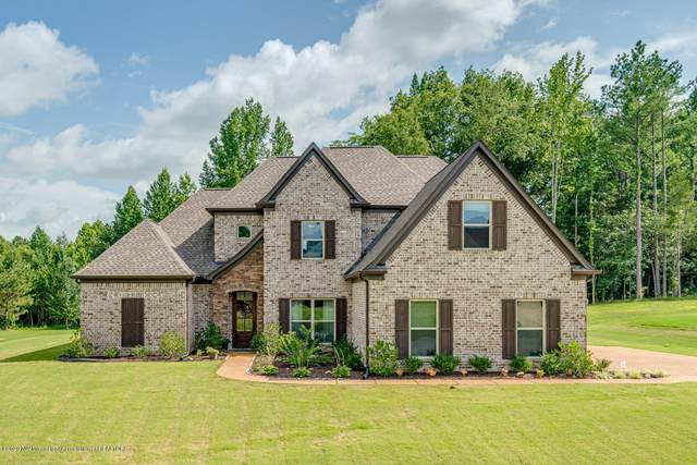 10333 Cypress Plantation Drive, Olive Branch, MS 38654 (MLS #330297) :: The Live Love Desoto Group