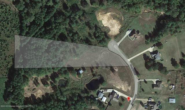 12 Southbrook Drive, Byhalia, MS 38611 (MLS #330305) :: Signature Realty
