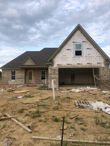 5616 Port Stacy, Horn Lake, MS 38637 (MLS #330372) :: The Live Love Desoto Group