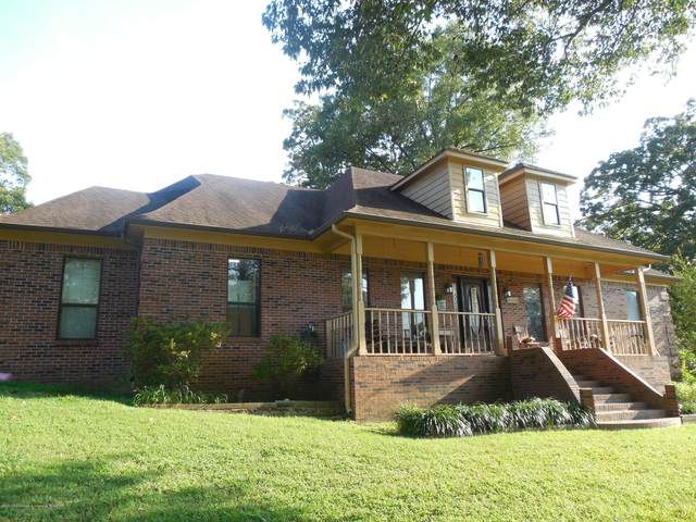5585 Maxwell Drive, Olive Branch, MS 38654 (MLS #330410) :: The Home Gurus, Keller Williams Realty
