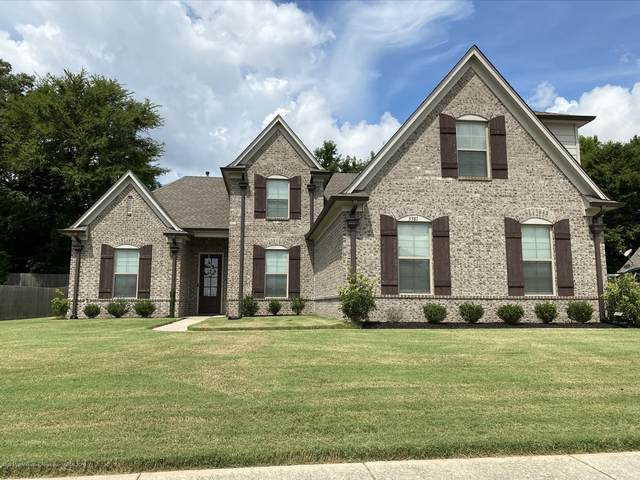 3381 Chateau Pointe Boulevard, Southaven, MS 38672 (MLS #330714) :: The Live Love Desoto Group