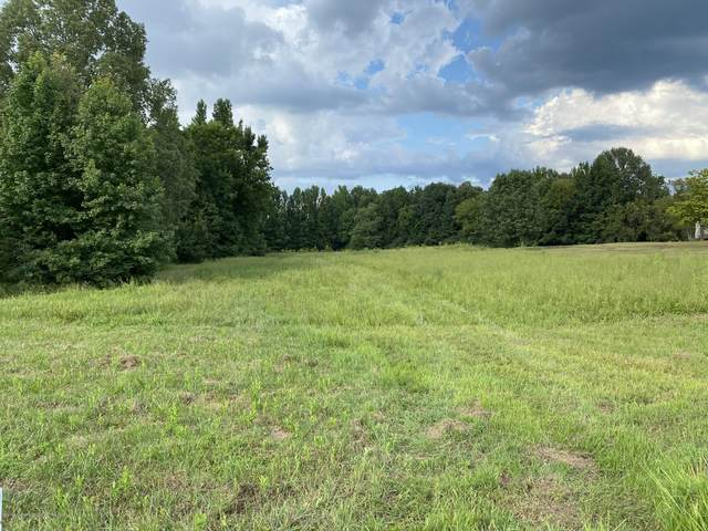Lot 3 Boone Circle, Coldwater, MS 38618 (MLS #331031) :: The Home Gurus, Keller Williams Realty