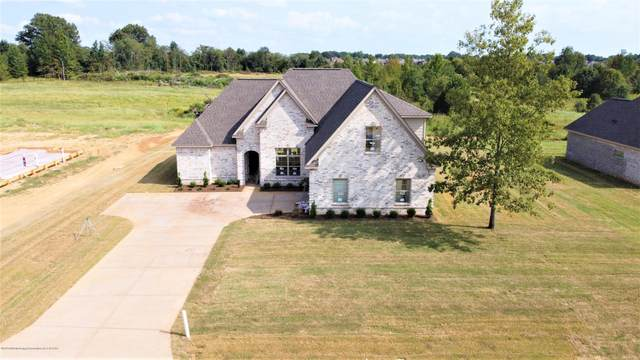 1587 Treestand Road, Southaven, MS 38672 (MLS #331526) :: The Home Gurus, Keller Williams Realty