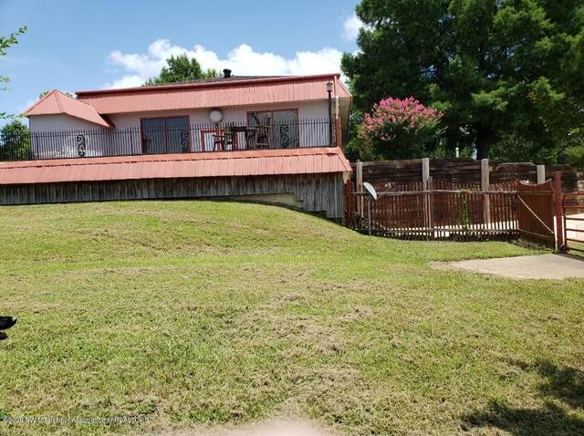 1577 Antioch Road, Coldwater, MS 38618 (MLS #331612) :: The Home Gurus, Keller Williams Realty