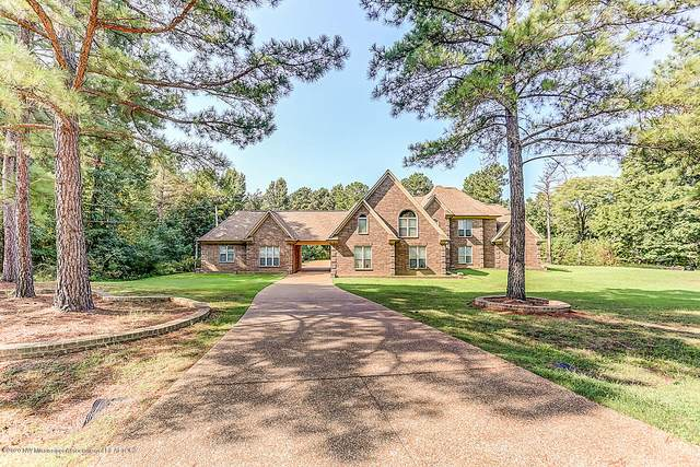 83 Dollie Irene Drive, Mount Pleasant, MS 38649 (MLS #331689) :: The Justin Lance Team of Keller Williams Realty