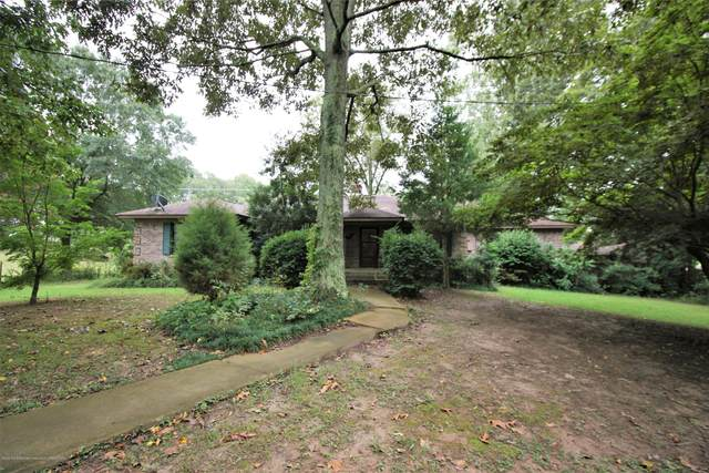 1821 E Star Landing Road, Nesbit, MS 38651 (MLS #331692) :: Gowen Property Group   Keller Williams Realty