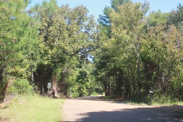 114 Brownlee Road, Sarah, MS 38665 (MLS #331770) :: Gowen Property Group   Keller Williams Realty