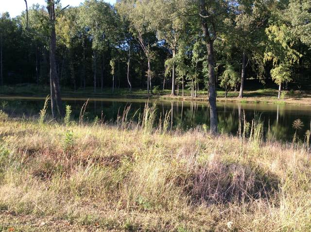 3106 Nikki Lakes Drive, Nesbit, MS 38651 (MLS #331843) :: The Live Love Desoto Group
