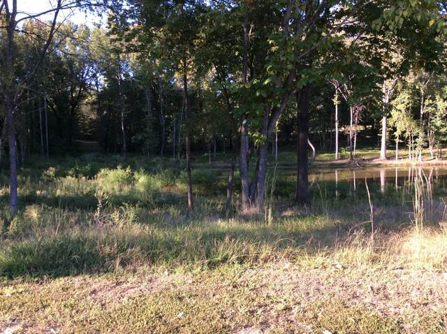 3144 Nikki Lakes Drive, Nesbit, MS 38651 (MLS #331844) :: The Live Love Desoto Group