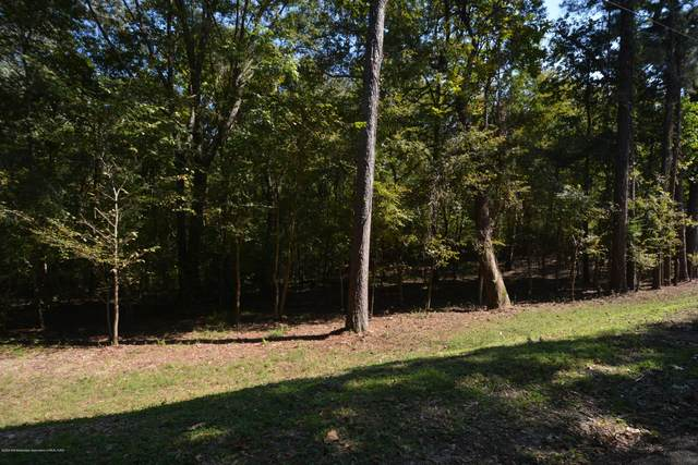 6439 Glynn Road, Hernando, MS 38632 (MLS #331958) :: The Live Love Desoto Group
