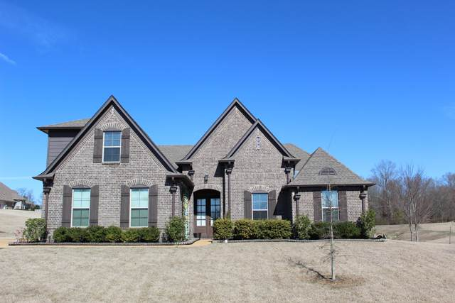 14176 Knightsbridge Lane, Olive Branch, MS 38654 (MLS #332021) :: Signature Realty