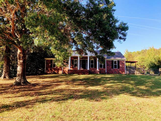 12972 Cathy Road, Byhalia, MS 38611 (MLS #332163) :: Gowen Property Group | Keller Williams Realty