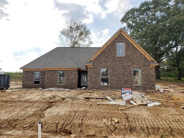 212 Cadet Drive, Senatobia, MS 38668 (MLS #332252) :: Gowen Property Group | Keller Williams Realty