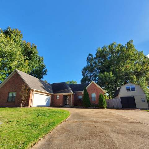 385 Plum Point Avenue, Southaven, MS 38671 (MLS #332277) :: The Live Love Desoto Group