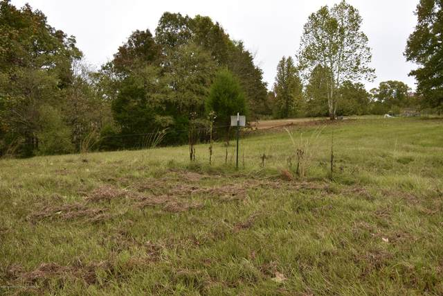 00 S Lewers Chapel Rd, Senatobia, MS 38668 (MLS #332290) :: The Justin Lance Team of Keller Williams Realty