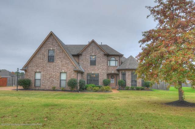 6743 Payne Lane, Olive Branch, MS 38654 (MLS #332331) :: The Live Love Desoto Group