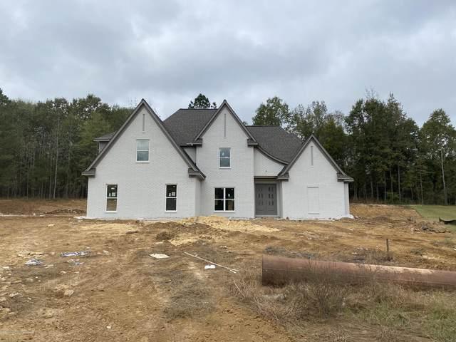 11410 Cedar Point Cove, Hernando, MS 38632 (MLS #332340) :: Gowen Property Group | Keller Williams Realty