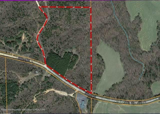 26 Mt. Hebron, Lamar, MS 38642 (MLS #332350) :: Gowen Property Group | Keller Williams Realty